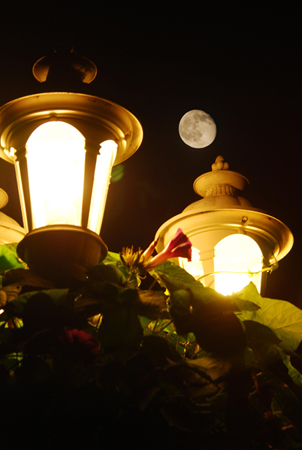Moon by Miles Ranno