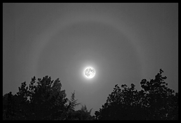 Moon Halo by Miles Ranno